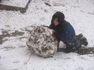 giant snowball 2