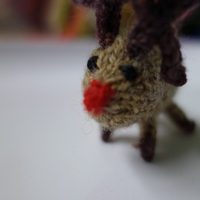 Tiny Reindeer by Anna Hrachovec