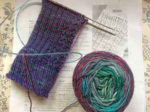 Stride socks in progress wannaknitfaster